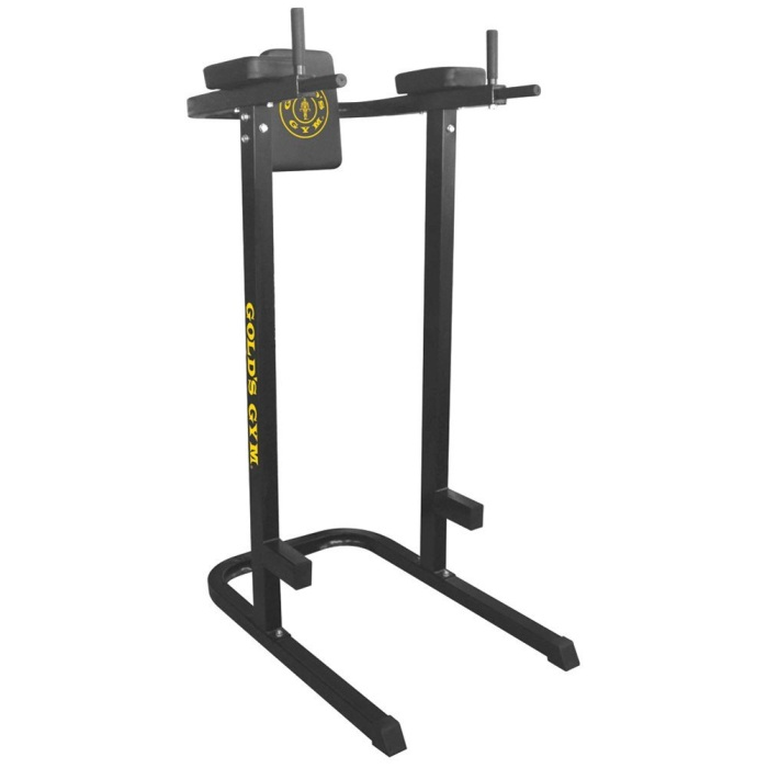 Gold's Gym Dip Station