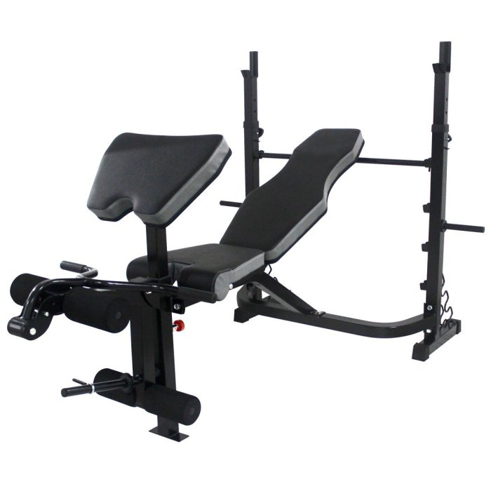 Sporttech Deluxe Weight Bench Review
