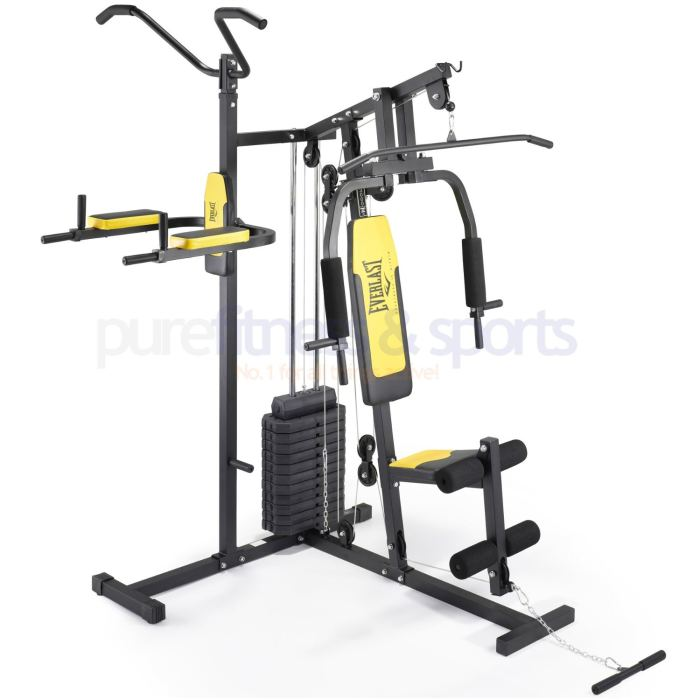 Everlast Home Gym with Pull Up and Dip Station – 75kg Weight Stack