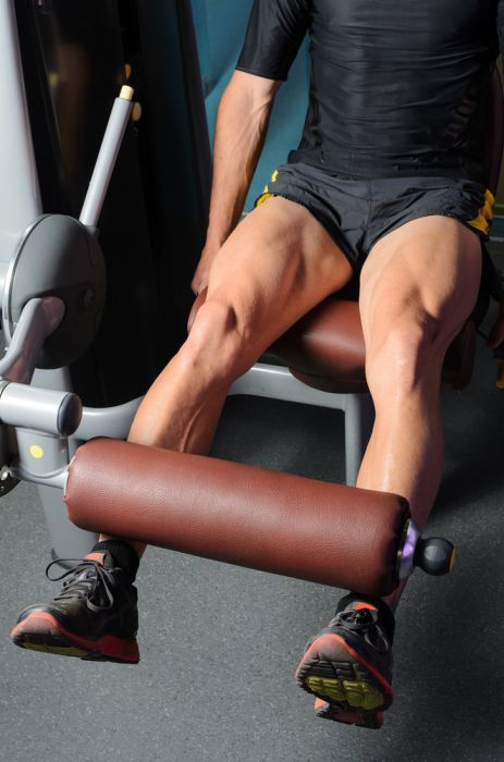 Why leg extensions are still important